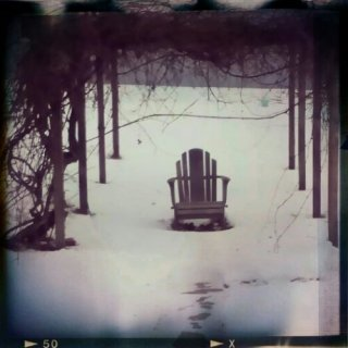 An Adirondack chair under a grape arbor in the snow
