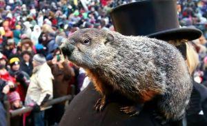 groundhog20day20livestream